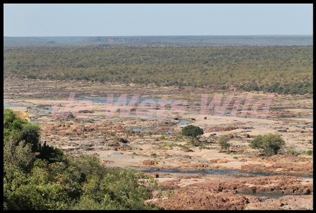 Olifants view