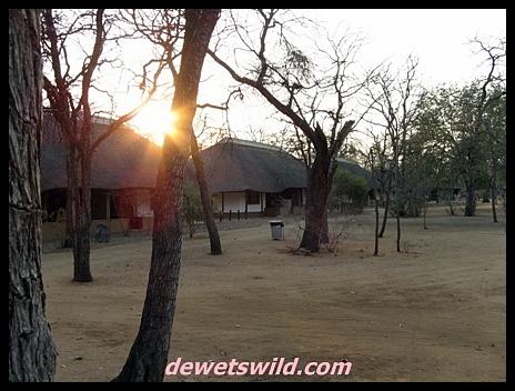 Shingwedzi bungalows