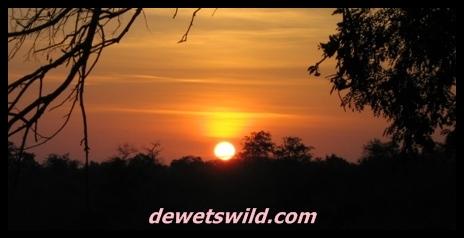 Shingwedzi Sunrise