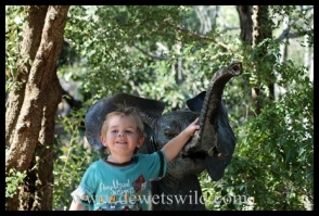 Joubert next to the little fountain in Olifants Rest Camp in Kruger Park