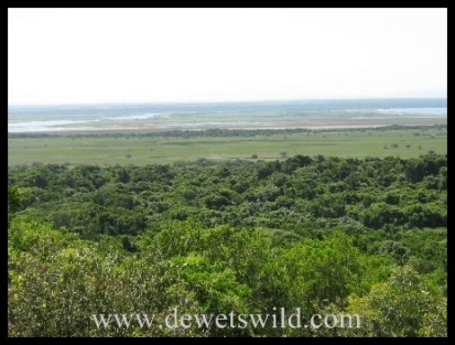 View across the Eastern Shores of Lake Saint Lucia (iSimangaliso Wetland Park)