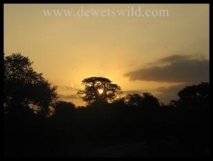 Sunset over the Kruger National Park (near Shimuwini Bushveld Camp)