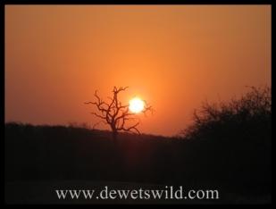 Sunset over the Kruger National Park (near Olifants Rest Camp)