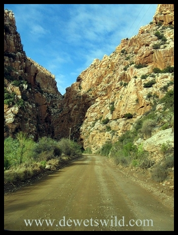 Approaching the Swartberg Pass from Prince Albert