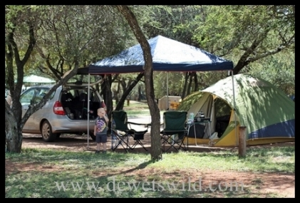 Manyane, Pilanesberg, March 2012