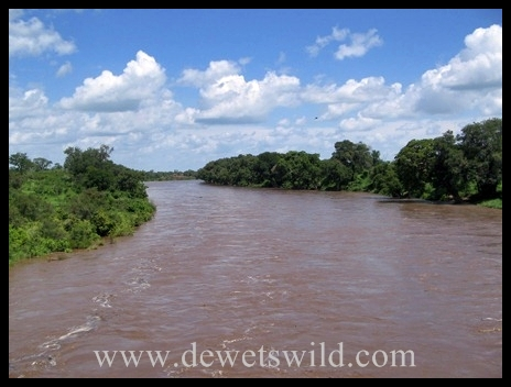 Shingwedzi River in flood1
