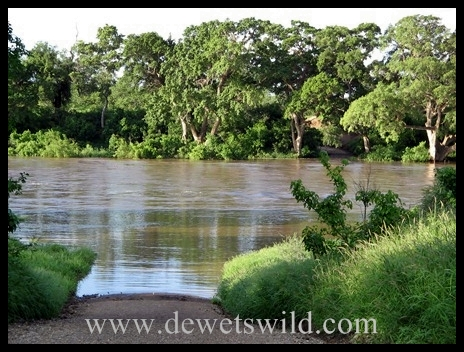 Shingwedzi River in flood2