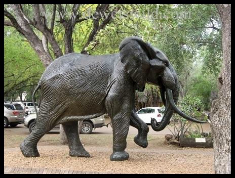 Letaba_ElephantHall2