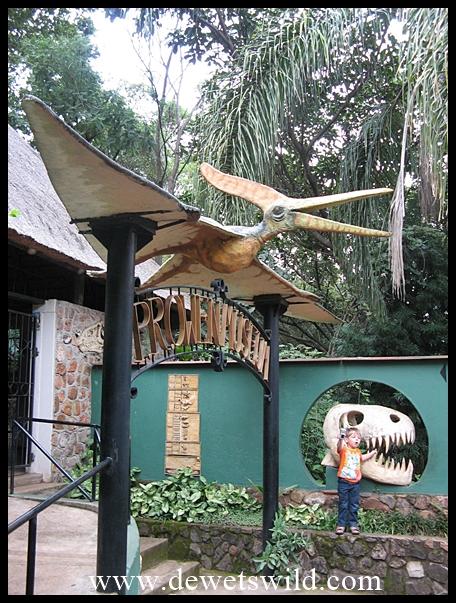 Sudwala Dino Park