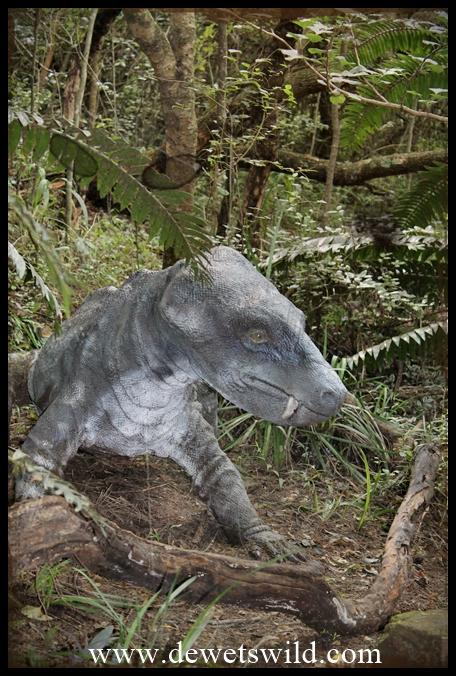 Titanogomphodon