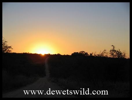 Pretoriuskop scenery