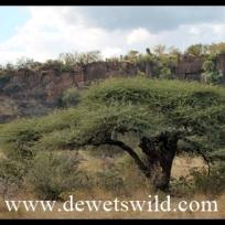 Olifants Trail scenery