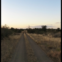 The road into the wilderness