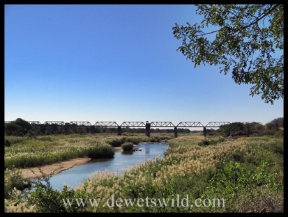 The railway bridge over the Sabie River, seen from Skukuza Rest Camp