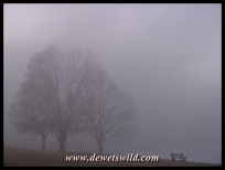 Midmar Misty Morning