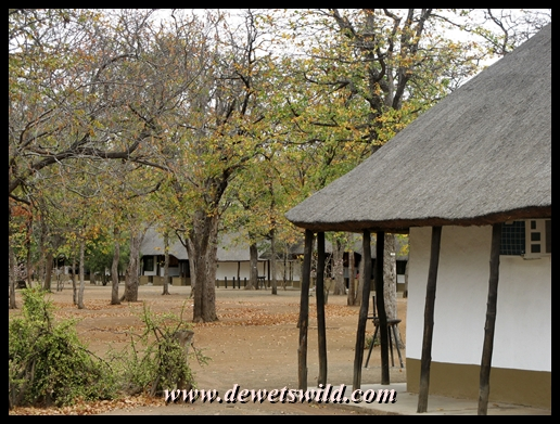 Shingwedzi accommodation