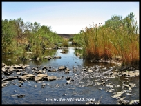 Ezemvelo Nature Reserve Scenery
