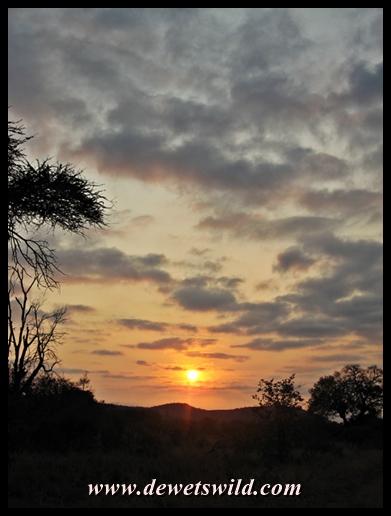 Punda Maria sunrise