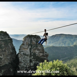 Zipping across the Oribi Gorge