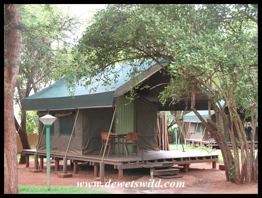 Crocodile Bridge safari tent