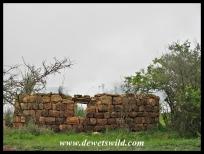 Evidence of early human habitation