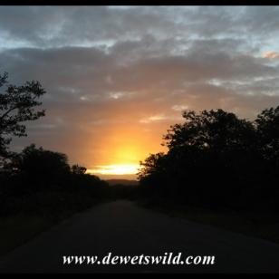 Pafuri Sunrise