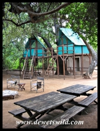 Inside Pafuri Rivercamp