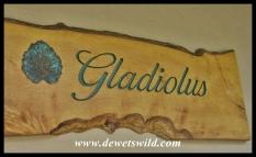 "Chalet 7, ""Gladiolus"""