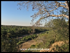 Bobbejaankrans is a viewpoint close to Orpen, overlooking the Timbavati River