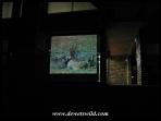Berg-en-Dal film show