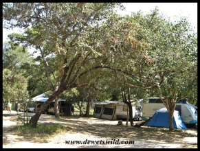 Camping at Maroela