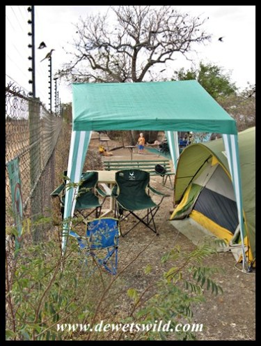 Our (spartan) campsite at Satara