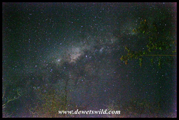 Milkyway above Shingwedzi