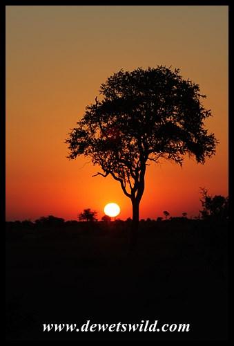 Satara sunset, H1-4