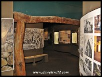 Stevenson-Hamilton Memorial Library & Kruger National Park Museum