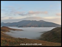 Valleys cloaked in mist