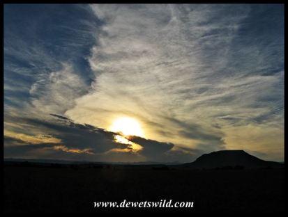Chelmsford sunset 14122014