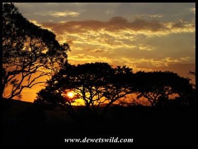 Chistmas sunrise over Hluhluwe-Imfolozi