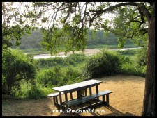 Beautiful Sontuli Picnic Spot on the banks of the Black Umfolozi