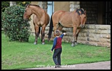 4 Years old: April 2014. Joubert de Wet, Horse Whisperer, at Golden Gate Highlands National Park