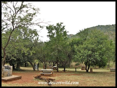 The picnic site in Loskop Dam Nature Reserve