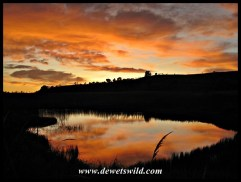 Kamberg sunrise
