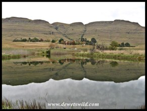 Looking across Eland Dam towards the camp against the hill