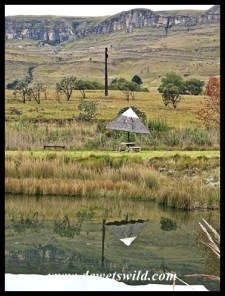 Picnic site at Eland Dam