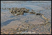 Rock pools at Cape Vidal