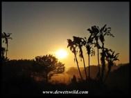 Sunrise on the Eastern Shores, iSimangaliso Wetland Park
