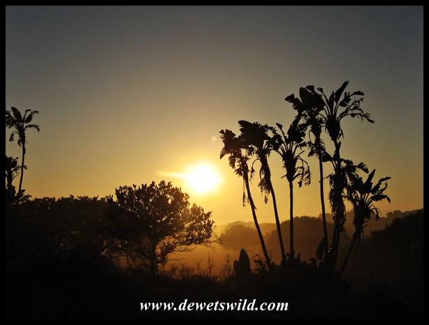 iSimangaliso Sunrise