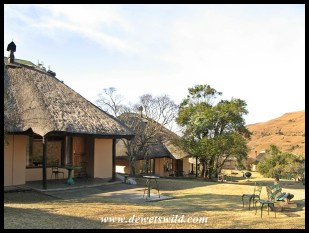 Thendele Lower Camp