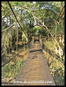 Suspension Bridge at the Pongolo Picnic Site