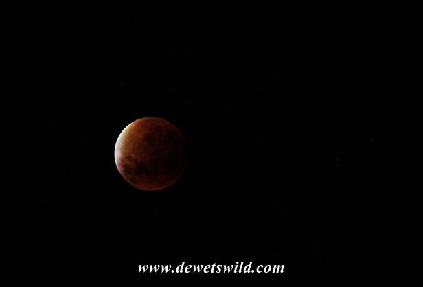 Lunar eclipse 28-09-2015